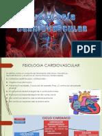 Expo Anatomia Fisiologia Cardiovascular