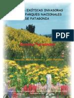 Las plantas exóticas invasoras de los Parques Nacionales de Patagonia