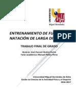TFG Muñoz Puche, José Pascual
