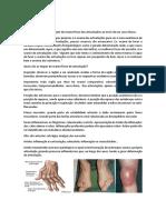 Articulaçoes.pdf