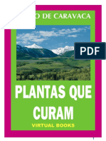 plantas_curam.pdf