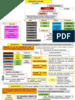 PATRIMONIO CULTURA.pdf