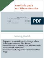 Plasmolisis pada tumbuhan Rhoe discolor.pptx