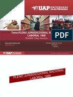 Pleno laboral 1999