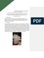 2014-2 p6 Carbohidratos