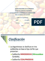 Cultivo de Leguminosas-1
