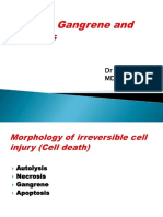 necrosisgangreneandapoptosis-150918022114-lva1-app6891.pdf