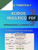 BIOLOGIA - Acidos Nucleicos