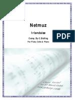 Bolling, Claude - Irlandaise Jazz Para Flauta, Chelo & Piano (Score y Parts)