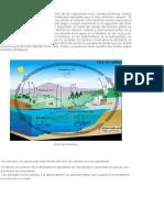 Cuerpo Del Ppt Ciclo Del Carbono Mecanica de Funcionamiento(1)