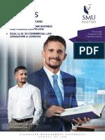 LLM_Brochure.pdf