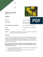 Arnica Materia Medica herbs