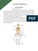 Anatomia.doc