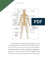 V. Anatomy & Physiology