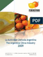 actividad-citricola-2009