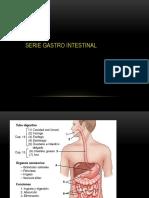 5. Serie Gastrointestinal