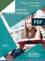 ProfessorECurriculo.pdf
