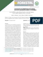 DINÁMICA DE BOSQUES EN DIFERENTES ESCENARIOS DE TALA SELECTIVA.pdf