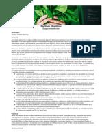 enzimasdigestivas_160901 RBD