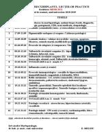 Planul-lecţiilor-practice1.doc
