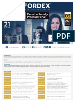 BROCHURE_II_DERECHO PENAL Y PROCESAL PENAL-1.pdf