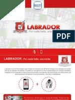 Labrador 2018 - Media Kit (3)