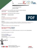 Programa de Posturologia Clínica CIES PERU.AREQUIPA.pdf
