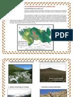 Monitoreo de Las Reservas Protegidad en La Region Junin