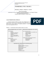 chiaranda.pdf