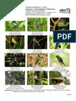 764_peru_colibries_de_cajamarca_0.pdf