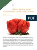 wasted-food-IP.pdf