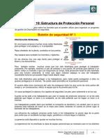 Lectura 10 - Estructura de Protección personal.pdf
