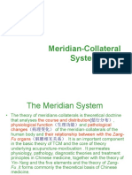 Meridian System