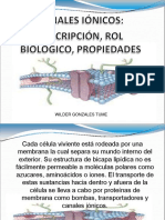 canalesionicos2