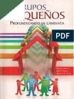GruposPequenyosProfundizandoLaCaminata_DivisionSudamericana.pdf