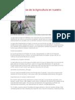 La Importancia de La Agricultura en Nuestro País