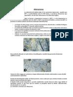 Alteraciones hidrotermales en minerales