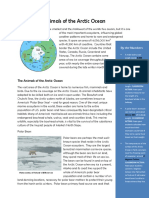 Animals-of-the-Arctic-Ocean.pdf
