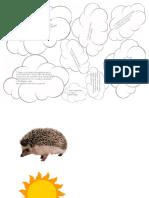 Mini dosar Arici.pdf