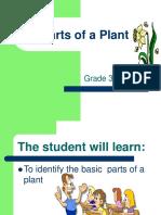 plant-parts.ppt