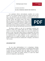Morfologia Dental y Grupos
