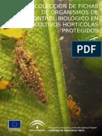 Fichas Ocb Cultivos Hortícolas Protegidos 06oct2011