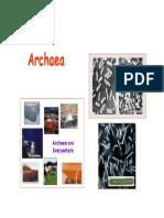 Diversidade Archaea
