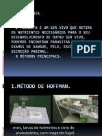 Lucas( Parasitologia Slaides)