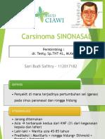 CA Sinonasal Sari