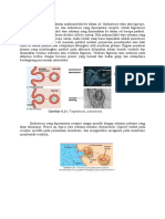 Endositosis biosel