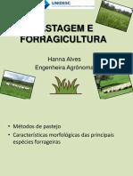 Métodos de pastejo e características morfologicas de plantas