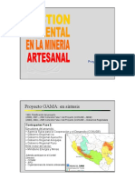 Gestion Ambiental en La Mineria Artesanal