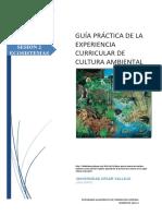 GUÍA_PRÁCTICA_02