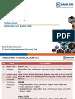 Bahan Presentasi Briguna Flat 2018 (2)